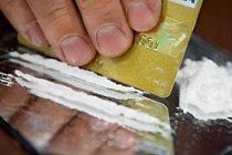 İsveç'te bahçesinde kokain saklayan kişi yakalandı