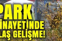 İsveç'te park cinayetinde flaş gelişme