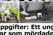İsveç'te sokak ortasında öldürülen 3 kişinin kimlikleri belli oldu