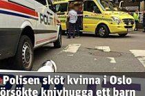Küçük çocuğu bıçaklamaya çalışan kadını polis öldürdü