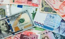 Türk Lirası'nda 2 yılın en hızlı yükselişi: Döviz düşmeye devam edecek mi? SEK - TL kaç lira oldu?