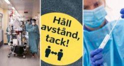 İsveç'te covid-19 ile ilgili son gelişmeler