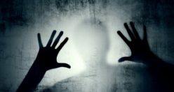 Bilginin laneti korku saçıyor