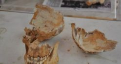 Sarayda ölen kadınlar 4 bin yıl sonra bulundu