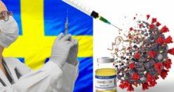 Salgınla ilgili İsveç'teki son durum: Aşılama ne durumda?