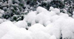 Güne lapa lapa karla uyandılar