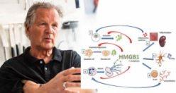 Araştırmacılar: Proteine karşı antikorlar, covid-19 hastalarını kurtarabilir