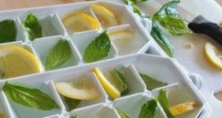 Ne Olduğunu Görünce Artık Limonları Hep Donduracaksınız!