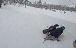 Orman horozu Norveçli çocuğu fena hırpaladı...VİDEO