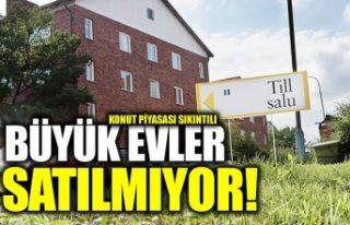 İsveç'te büyük evlerin satışı azalıyor