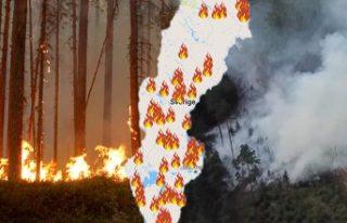 Korkunç yangınlar: İsveç'in ciğerleri yanıyor