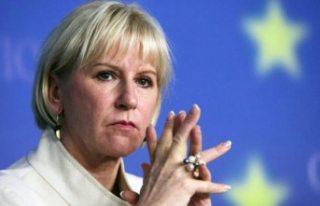 İsveç'te Feminist dış politika nasıl izlenir?