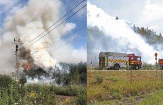 İsveç'te meydana gelen kaza orman yangını...