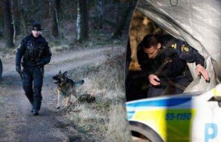 İsveç'te yılan hikayesine dönen cinayetin...