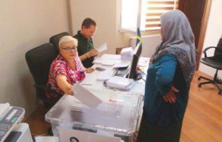 İsveç'in kaderi Kulu'da oylanacak