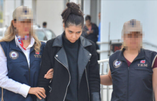 4 dil bilen DEAŞ'li Fransız terörist, Adana'da...