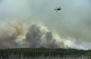 İsveç'te orman yangınına neden olan şirkete...
