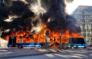 İsveç Ulaştırma Ajansı, gazlı otobüslerle ilgili...