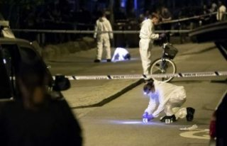 Malmö cinayetine 12.5 yıl hapis