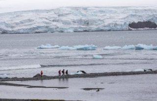 Geleceğin tehlikesi: Kutuplar ısınıyor buzullarda...