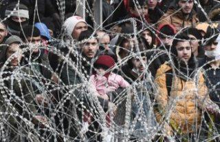 Bakan Soylu: Türkiye sınırından Avrupa'ya...