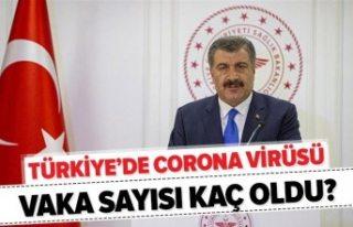 Türkiye'de corona virüs vakaları arttı