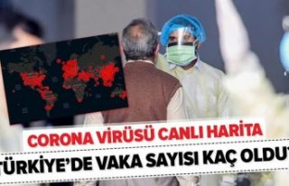 Türkiye'de vaka ve ölüm sayıları endişe...