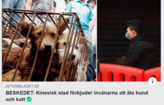 Çin'den koronavirüs kararı: Köpek ve kedi...