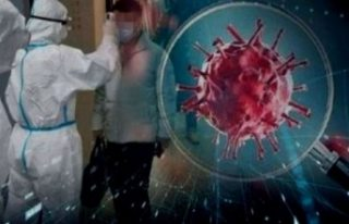Çin'den koronavirüsün kaynağına araştırma...