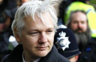 Assange'ın hayatı tehlikede