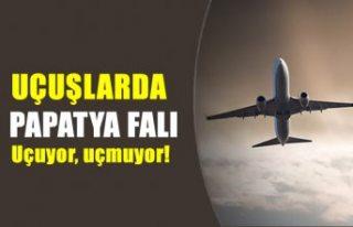 """Uçuşlarda """"papatya falı"""" dönemi"""