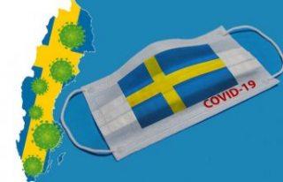 İsveç'te vaka sayısı 442 artarak, 84 bin 294...