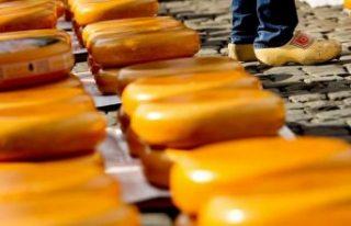 Peynirden zehirlenen 10 kişi hayatını kaybetti,...