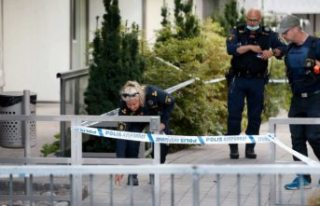 Stockholm'de cinayetlerin ardı arkası kesilmiyor!...