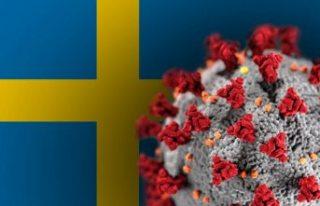 İsveç Covid-19 verilerini haftada sadece 4 gün...