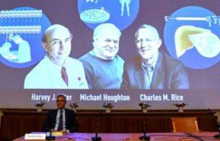 2020 Nobel Tıp Ödülü, Hepatit C virüsüne yaptıkları...