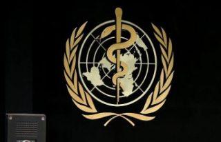 Dünya Sağlık Örgütü: Küresel 2. Covid-19 dalgası...