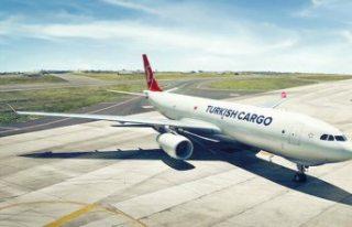 Avrupa'nın en iyisi THY Cargo
