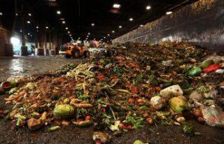Dünyadaki yiyeceklerin üçte biri israf ediliyor:...