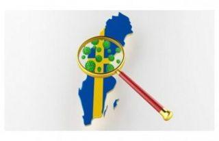 İsveç'te can kayıpları 14 bini aştı