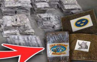 Danimarka ve İsveç polisinden uyuşturucu operasyonu:...