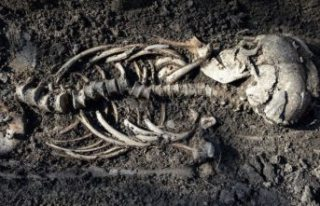 İsveç'te Viking ikiz bebeklerin iskeletleri keşfedildi