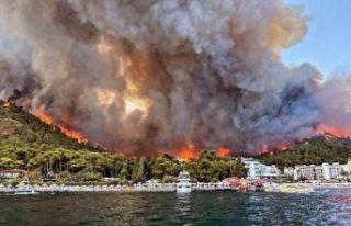 """Marmaris'te orman yangını... """"Kitap yakıyorduk,..."""