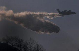 Türkiye'deki orman yangınlarında son durum:...