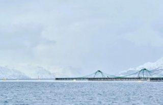 Norveç'teki klor sızıntısı yaklaşık 100...