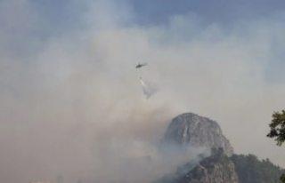 Türkiye'deki orman yangınlarına 6 ülkeden...
