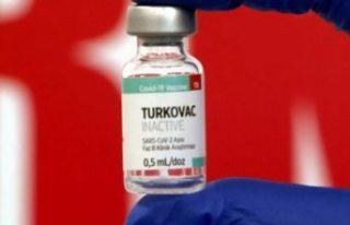 Türkiye'nin ürettiği Kovid-19 aşısı piyasaya...