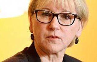 Anayasa Mahkemesi'nden İsveç Dışişleri Bakanına...