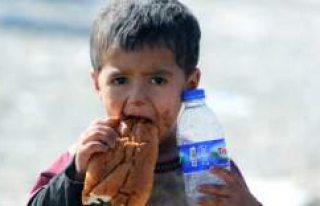 Avrupa'da 25 milyon çocuk açlık sınırında...