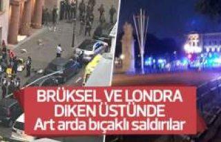 Brüksel ve Londra'da polis ve askerlere saldırılar
